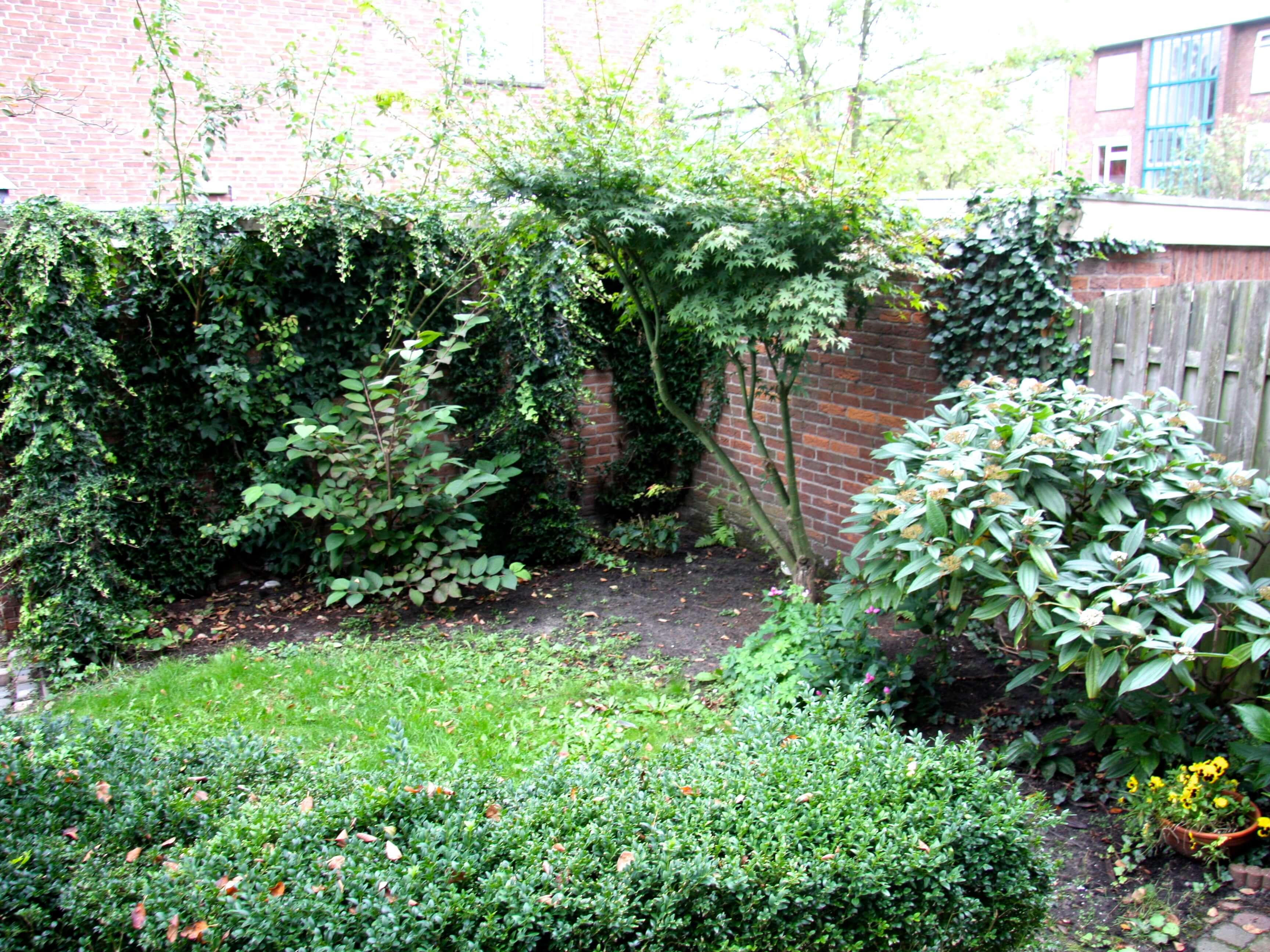 Kleine achtertuin vol romantiek