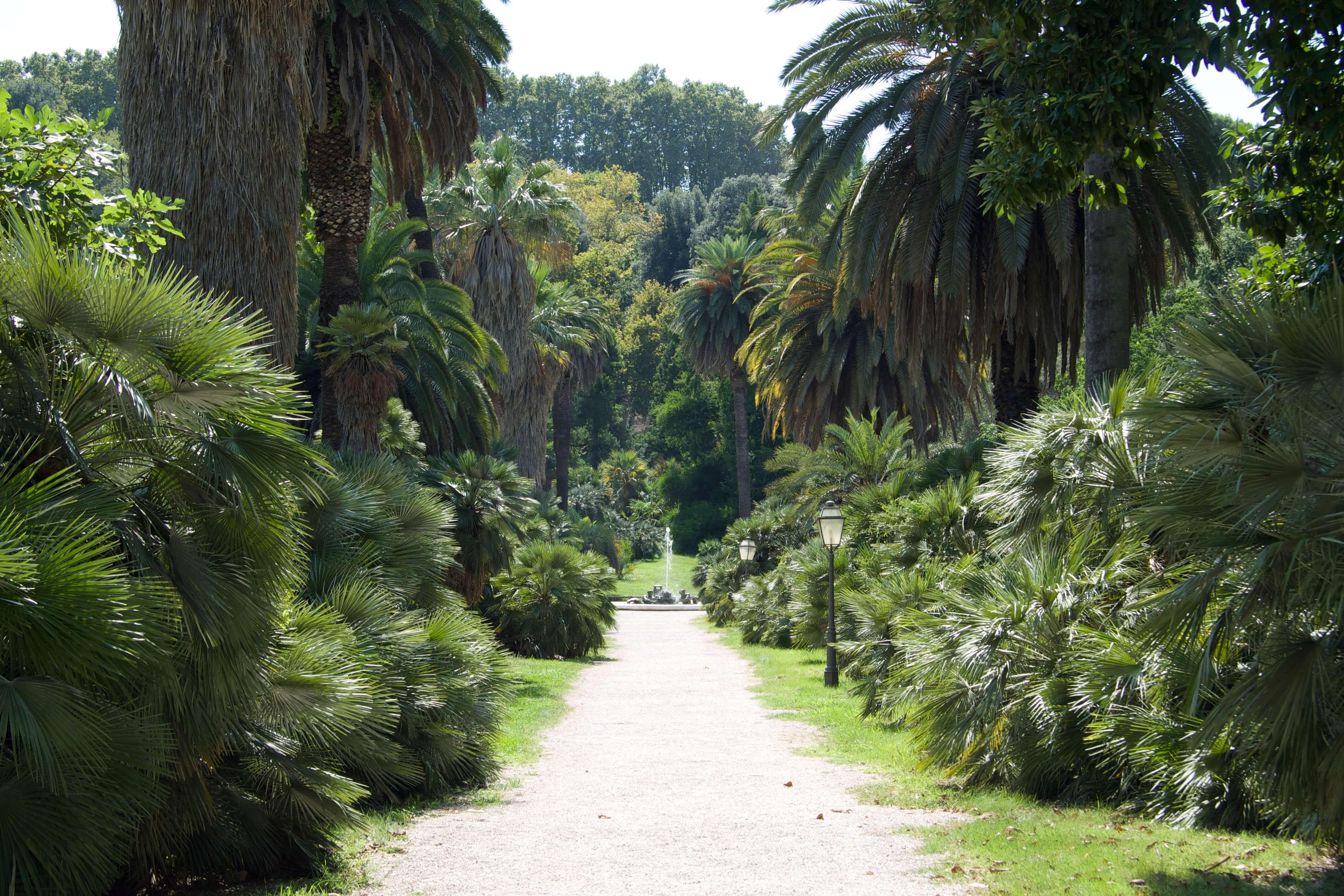 Orto Botanico Rome