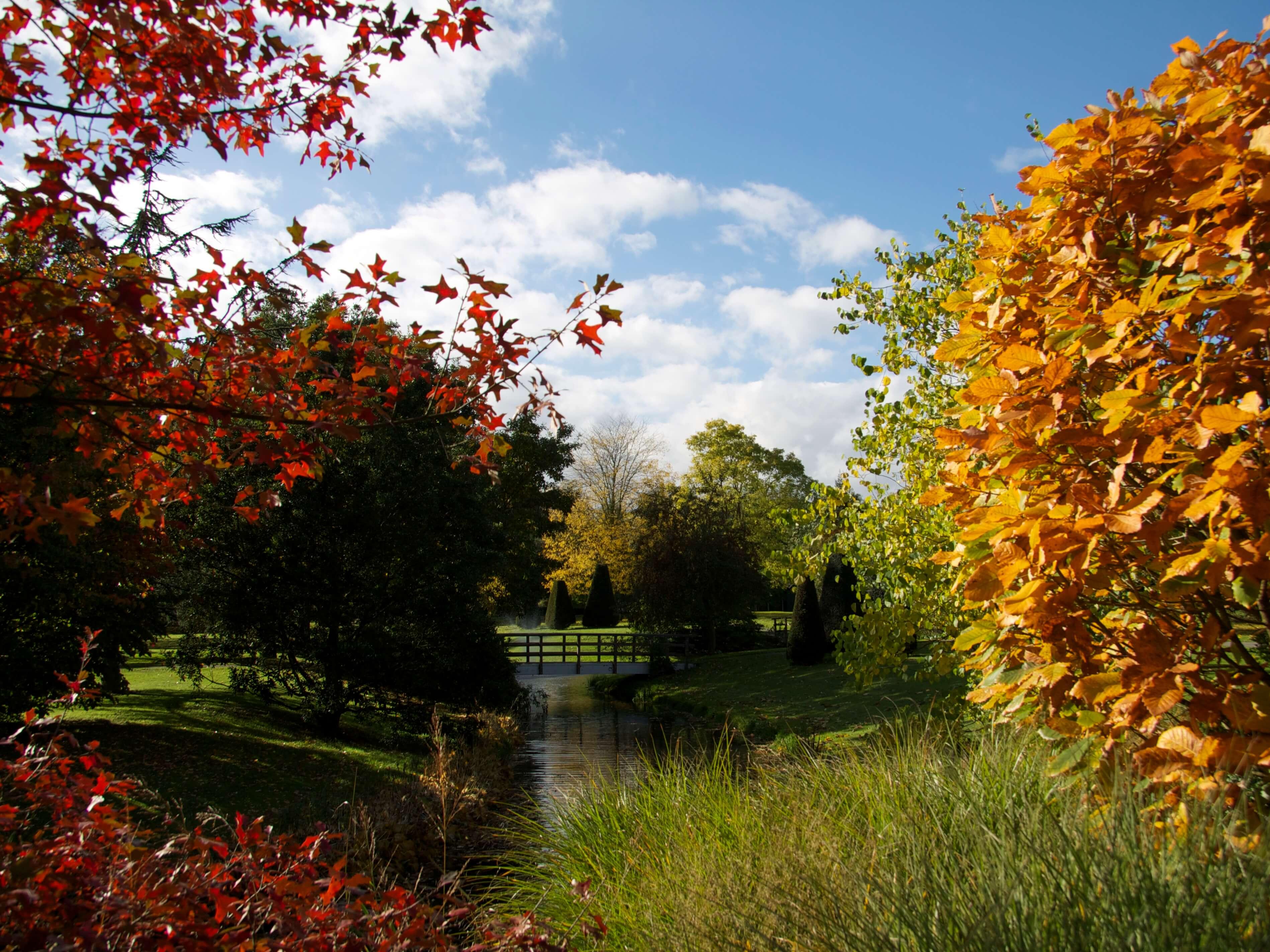 herfst in Zwijndrecht