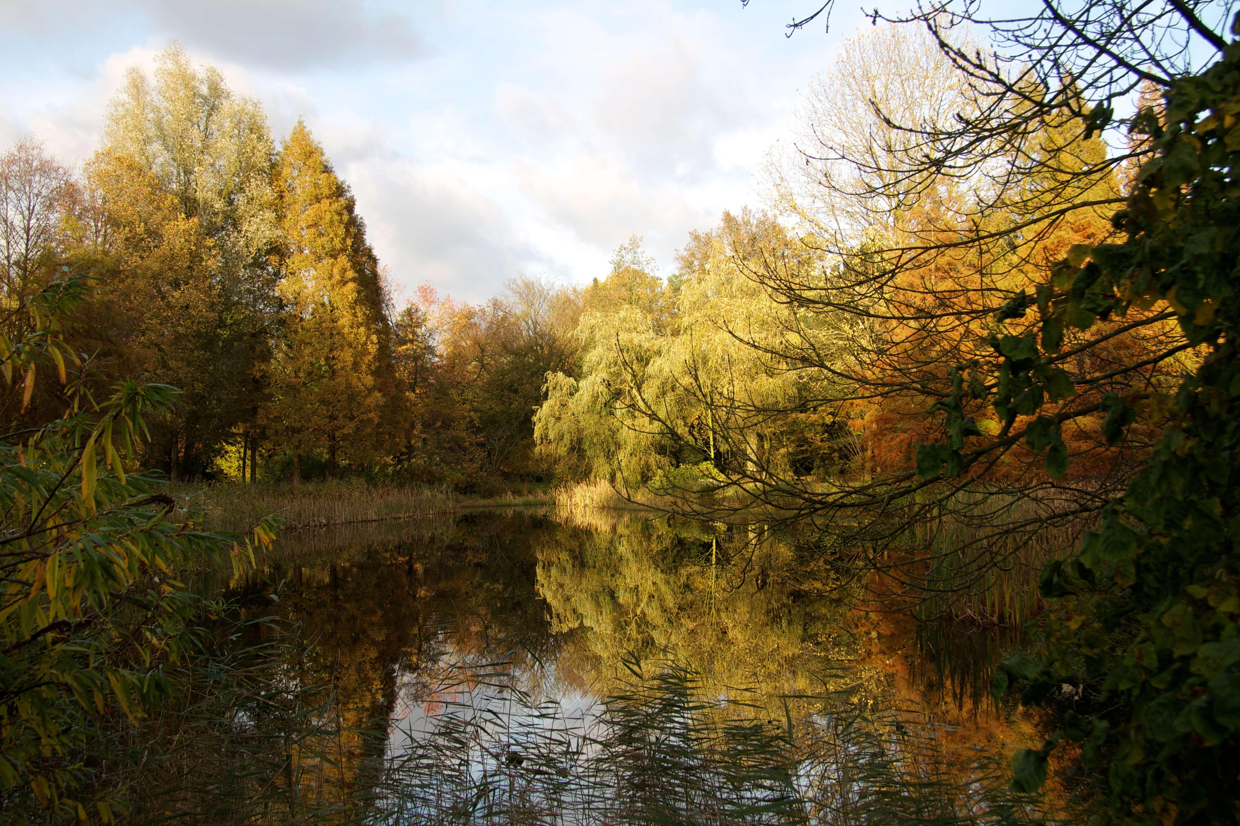 von Gimborn Arboretum
