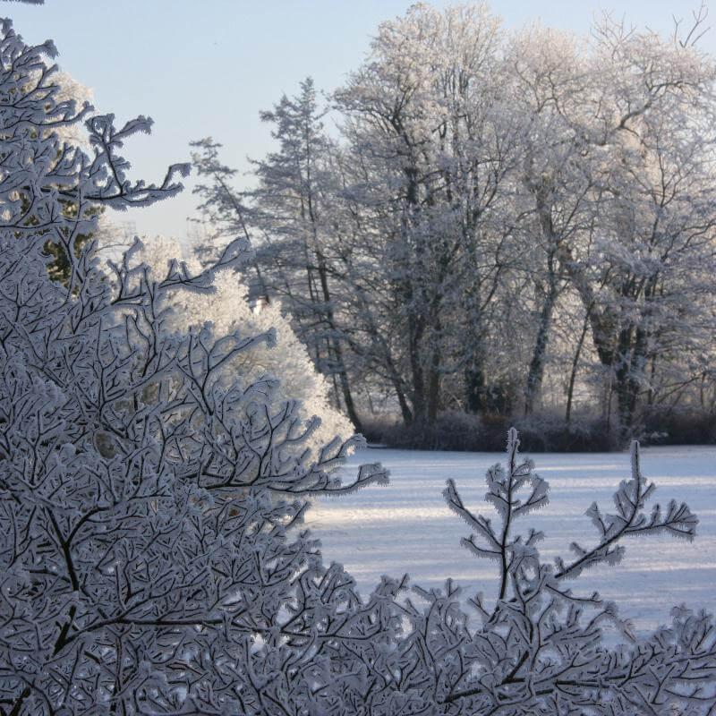 winterplaatje