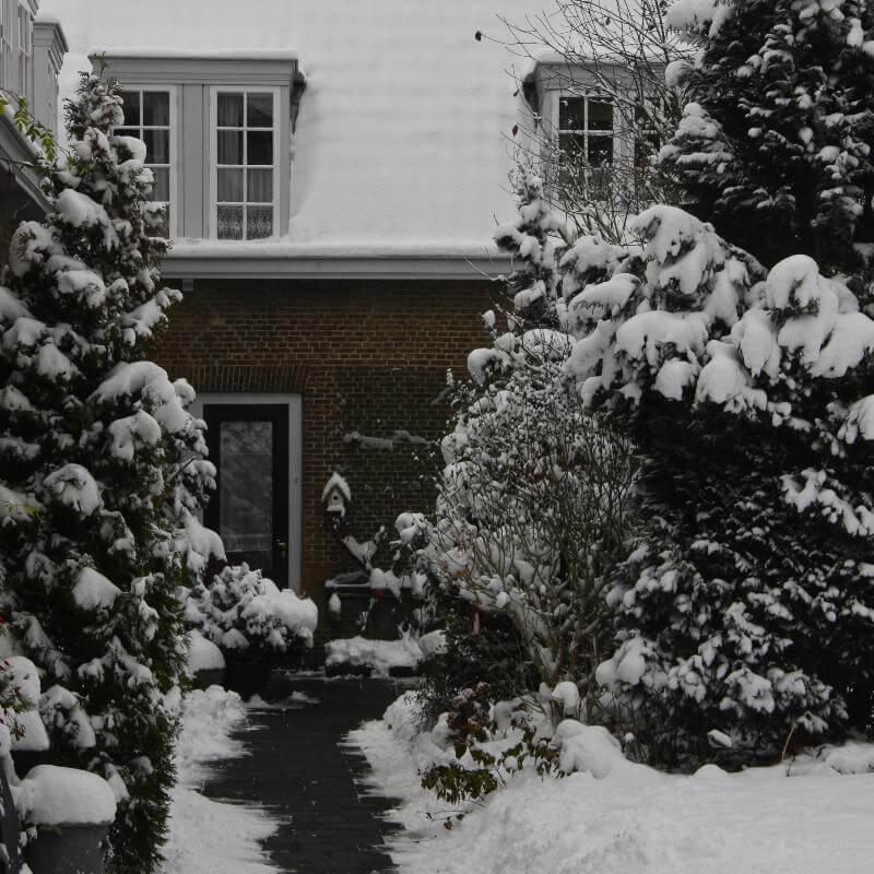 Winters tuinplaatje